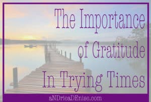The Importance of Gratitude In Trying Times