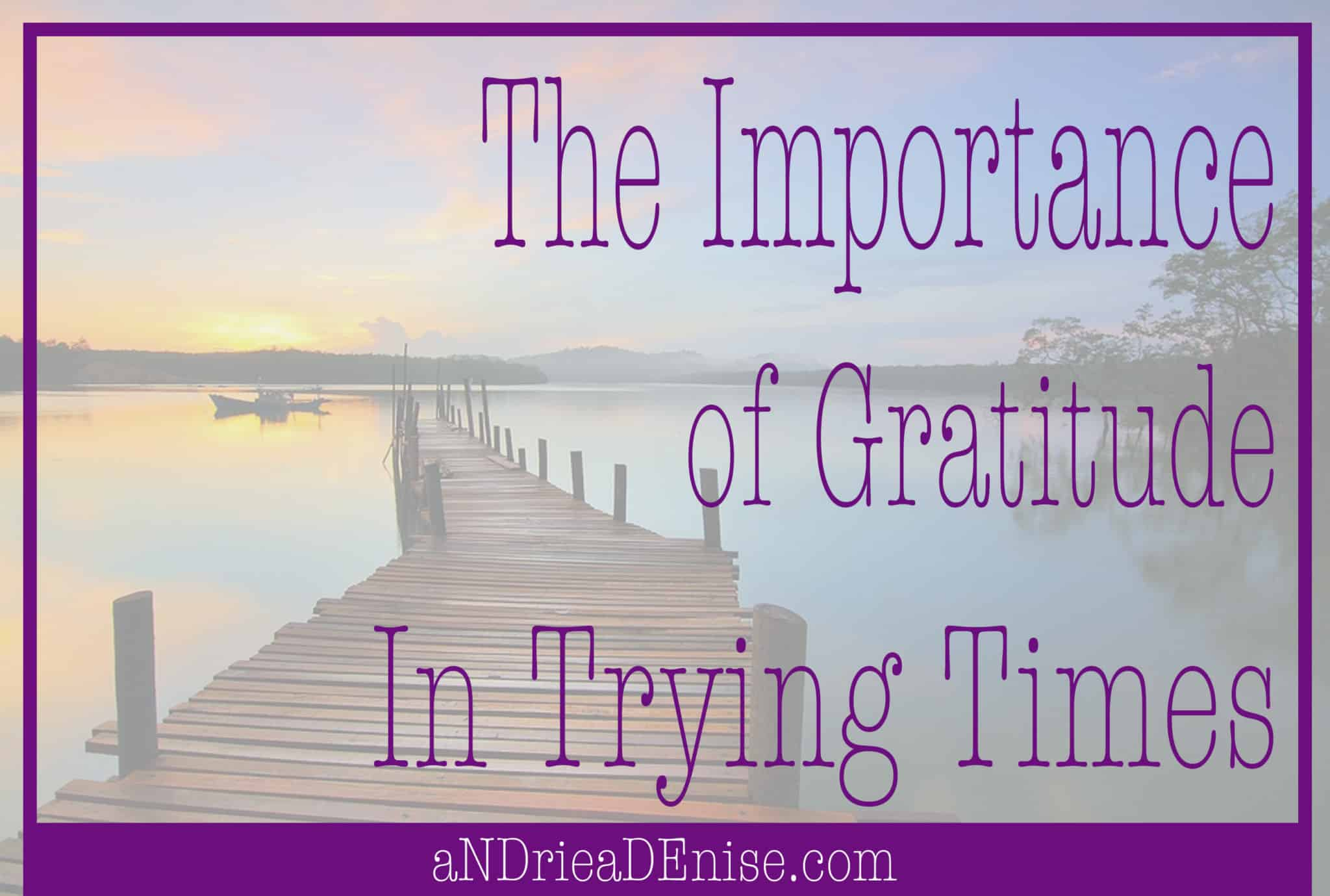 Gratitude in Trying Times