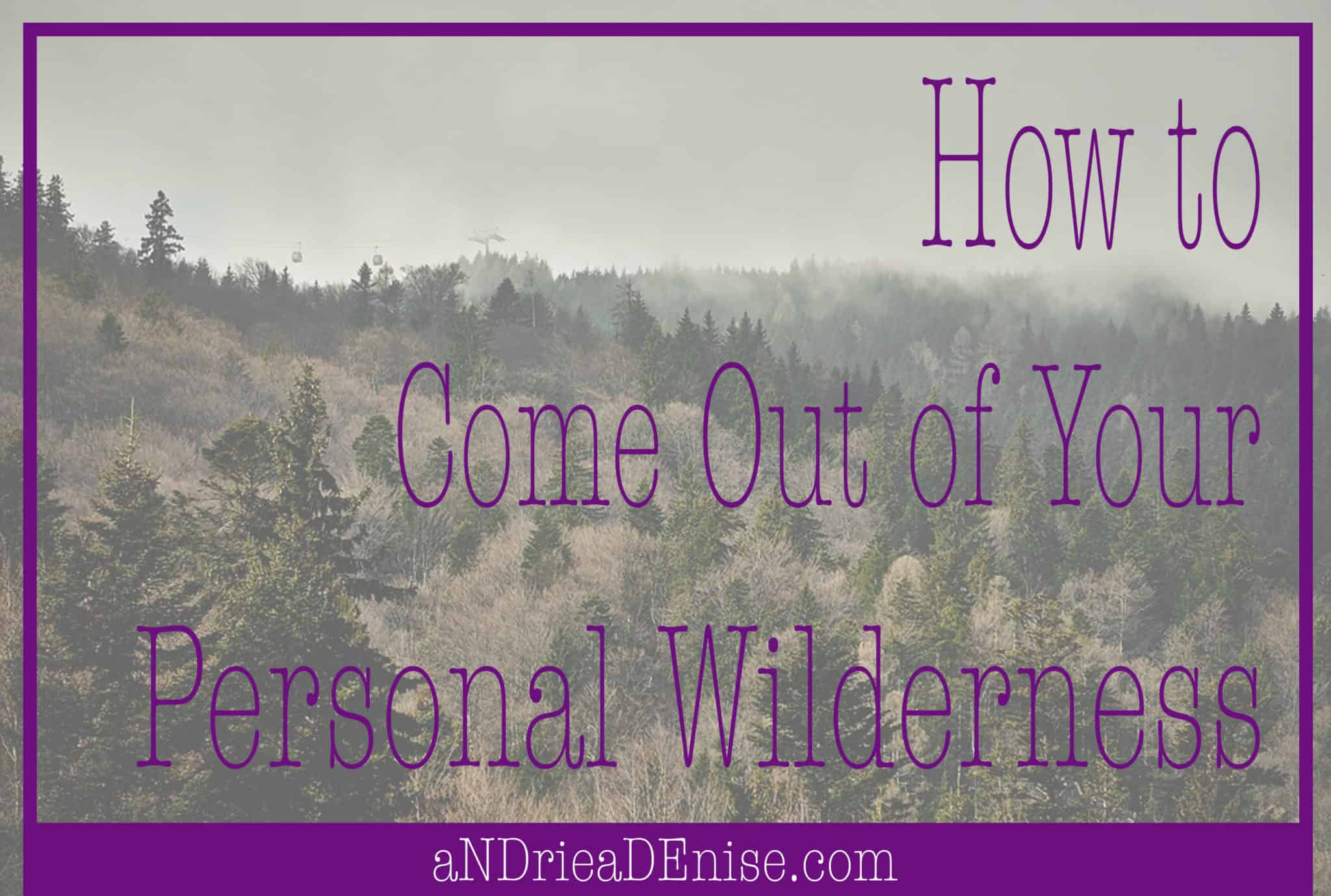 Personal Wilderness