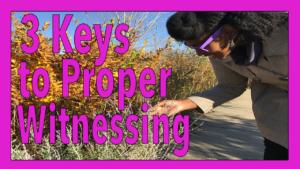 Wisdom Wednesday Part 2: 3 Keys to Proper Witnessing